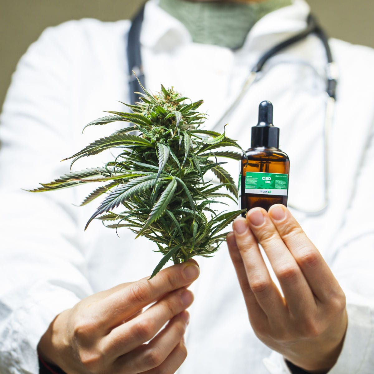 Doctor in a white coat holding cannabis extract for weed storage