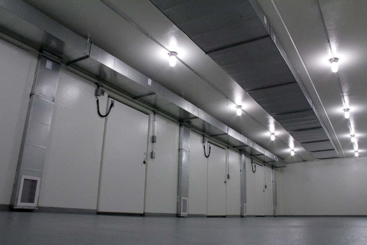Inside of a Polar King freezer unit